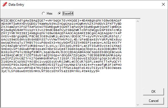 ASN.1 Base64 Format